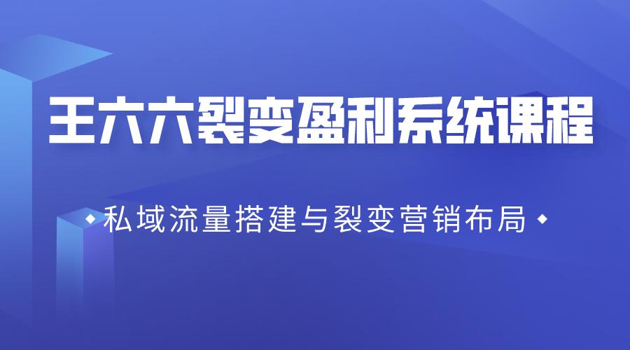王六六裂变盈利系统课程03私域流量搭建与裂变营销布局