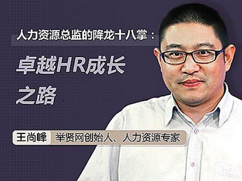 人力资源总监的降龙十八掌:卓越HR成长之路