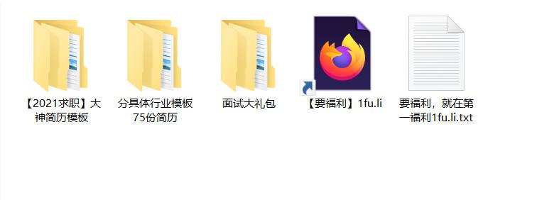 2021求职+真人简历大礼包