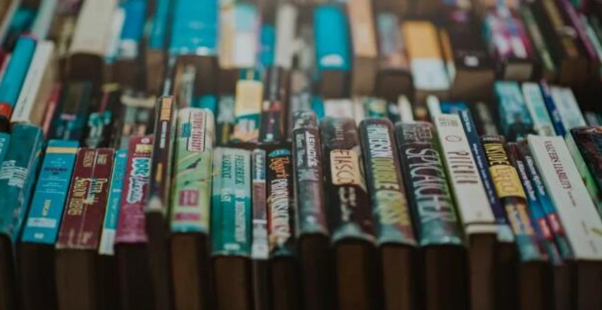 小说作家教会你30天写小说,靠小说赚钱